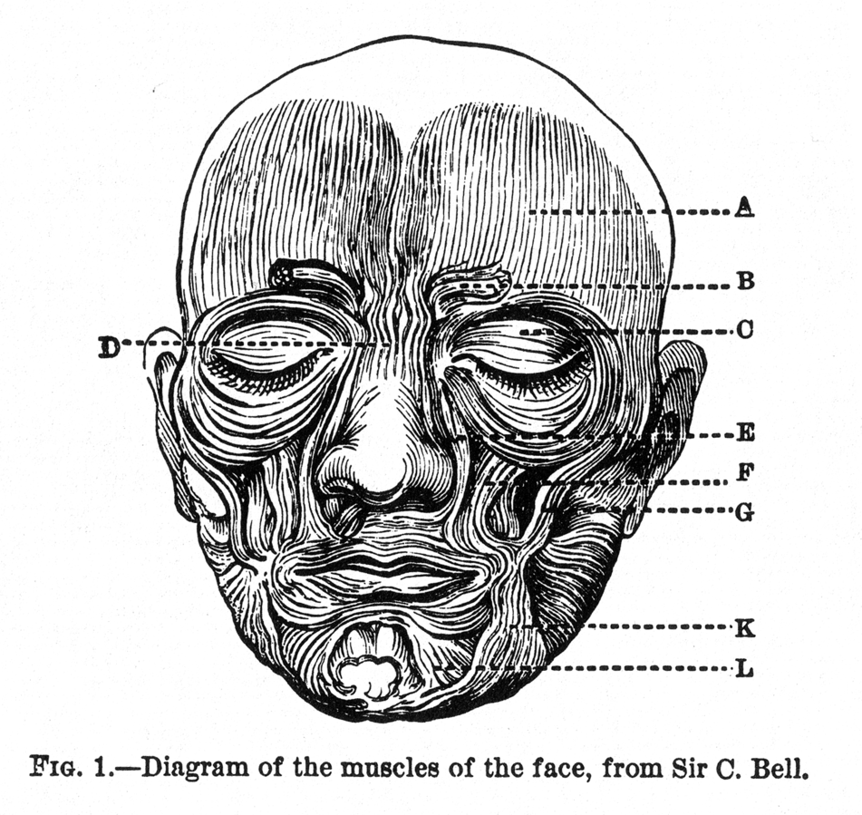 Expression_of_the_Emotions_Figure_1